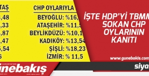 İşte HDP'yi TBMM'ye sokan CHP oylarının kanıtı